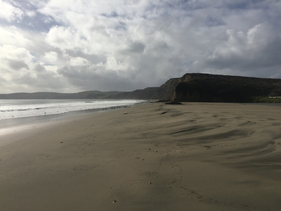 drakes beach 1