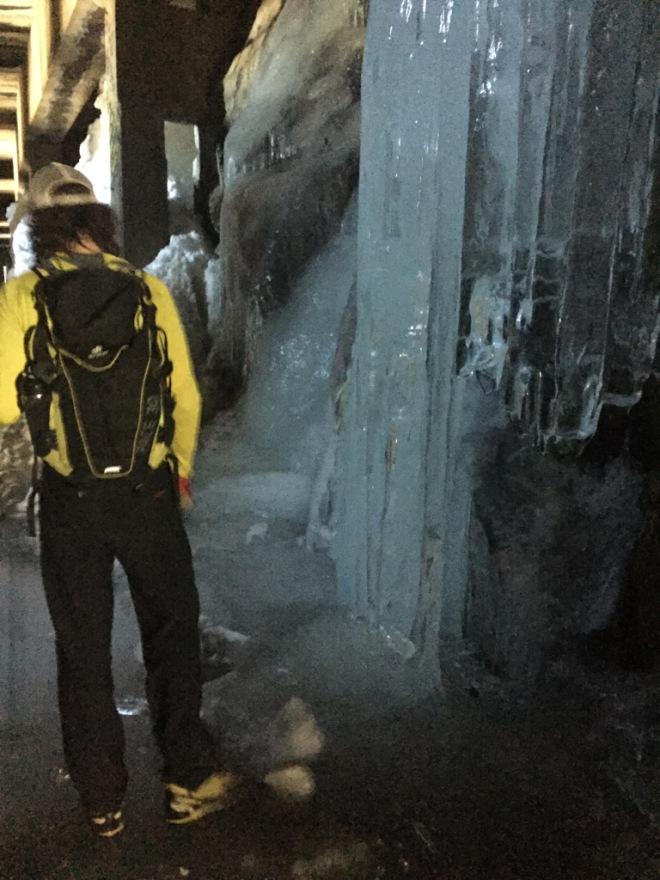 greyson ice sculpture